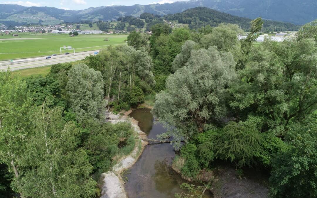 Amphibienlaichgebiet Reumeren, Reichenburg SZ